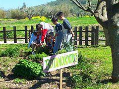 ΨΥΧαγωγήσου - Μία εκδήλωση για καλό σκοπό Greece, Action, Culture, Greece Country, Group Action