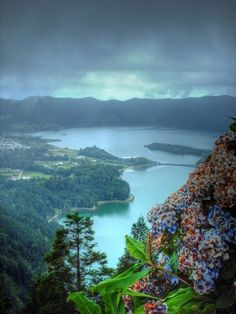 Spookily beautiful Brazil... Visit us at www.melko.com.au!
