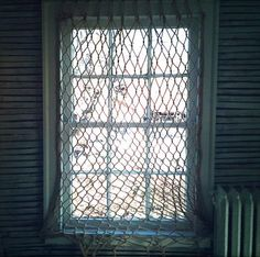 DIY Fishnet Window Covering. Dear Lord, is there a single window in my house where I can put this?