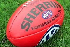 Sherrin Football.  It's shape is unique to AFL.