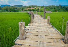 Beautifully simple in its construction, simply beautiful in its location. The bamboo bridge of Su Tong Pae in Mae Hong Son province stretches for 500 metres across rice fields and the Mae Sa Nga Ri...