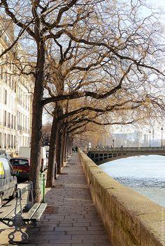 Île Saint Louis in Early February - Paris Beautiful Paris, I Love Paris, Most Beautiful Cities, Paris Travel, France Travel, Image Paris, Ile Saint Louis, St Louis, Belle Villa