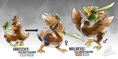 Farfetch'd Fakemon Evolution (Mallar'kee)