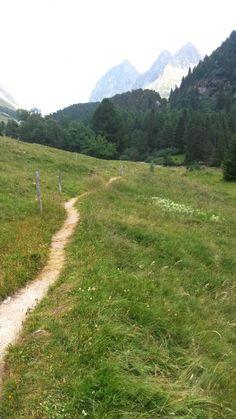 Blick zum Albulapass hoch, Standort am Lai da Palpuogna, Bergün / Preda