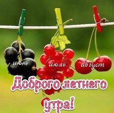 Morning Greeting, My Love, Have A Good Night, Good Morning, Summer Recipes