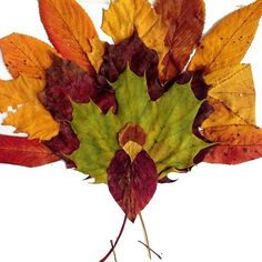 """Pin for Later: 19 Cool Thanksgiving Crafts For Kids Fall Leaf Turkey This turkey made from real leaves requires a two-part process: the outdoor foraging for your supplies and the indoor """"composition. Autumn Leaves Craft, Autumn Art, Crafts To Make, Kids Crafts, Kids Diy, Leaf Projects, Thanksgiving Crafts For Kids, Autumn Crafts For Kids, Turkey Craft"""