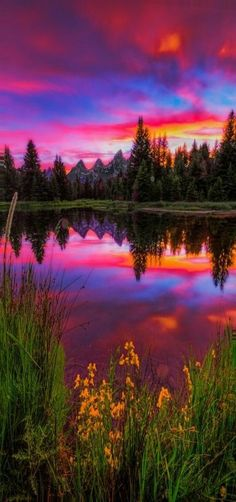 Late spring sunset by the iconic beaver dam at Schwabachers Landing in Jackson Hole, Wyoming (USA)