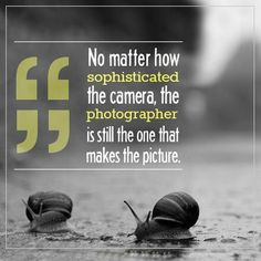 No matter how sophisticated the camera, the photographer is still the one that makes the picture.