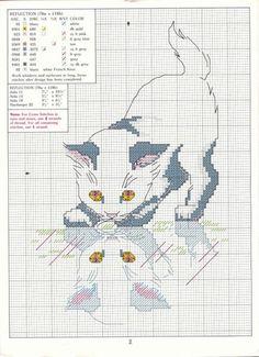 Cat Cross Stitches, Cross Stitch Needles, Counted Cross Stitch Patterns, Cross Stitch Designs, Cross Stitching, Cross Stitch Embroidery, Embroidery Patterns, Cross Stitch Boards, Cross Stitch Animals