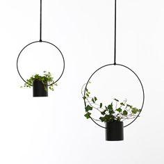 Kerä by Hanna Särökaari Flower Pots, Flowers, High Resolution Picture, Hanging Baskets, Blacksmithing, Plant Hanger, Indoor Plants, My Design, Interior Decorating