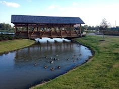 Another one of our beautiful bridges at Discovery Park of America.