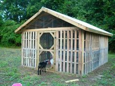 Raising chickens has gained a lot of popularity over the past few years. If you take proper care of your chickens, you will have fresh eggs regularly. You need a chicken coop to raise chickens properly. Use these chicken coop essentials so that you can. Chicken Coop Pallets, Backyard Chicken Coops, Chicken Coop Plans, Building A Chicken Coop, Backyard Farming, Chickens Backyard, Backyard Ducks, Backyard Poultry, Pallet Coop