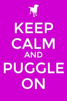 Keep calm and puggle on my modo in life