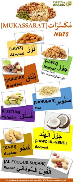 Types of Nuts in Arabic. Visit the website for audio for listening. #infographic #learnarabiclanguage