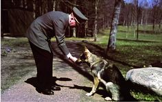 "Adolf with Blondi at FHQ Wolfsschanze. It's a ""real"" colorphoto taken by Walter Frentz - never seen this one before! (via reich-mystery)"