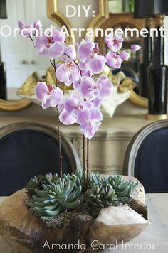 Amanda Carol at Home: DIY: Orchid and Succulent Arrangement