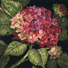Amazon.com: Dimensions Needlecrafts Needlepoint by Kathryn White, Hydrangea Bloom