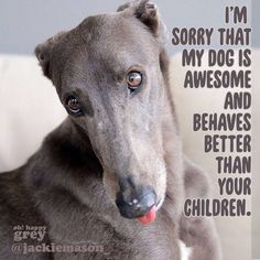 ❤ =^..^= ❤ Definitely an awesome grey! Bwa ha ha ha! Unfortunately, almost all sighthounds behave better than most children .....