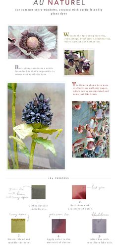 How the Window Dressers at Anthropologie created the stunning flowers in the windows for the summer windows. Au Naturel - House & Home - Anthropologie.com