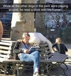 Funny Animal Pictures Of The Day (24 Pics) #funny #pictures #memes #animals #dogs #cats #humor #hilarious