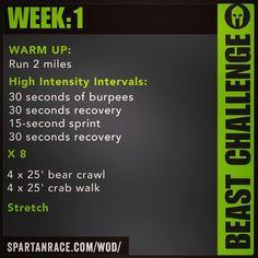 Spartan Training: Beast Challenge (Week1)