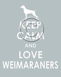 http://cnatrainingclass.co CNA Training Class  Weim love bella
