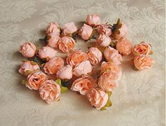 Peach Artificial Silk Rose Flower Heads for DIY Brooch Headpieces Garland Craft Embellishment Wedding Party Decoration (60PCS) dreammadestudio http://www.amazon.co.uk/dp/B00VE15I38/ref=cm_sw_r_pi_dp_1rRkvb18VD46K