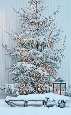 Eingeschneit winter in 2018 pinterest - Winterlandschaft dekoration ...