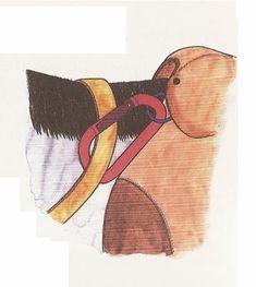 One way to stop reins slipping down the neck.Blog de Klaramina - Page 12 - Skyrock.com