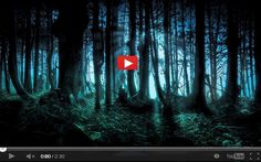 the forest movie free download full version
