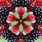 berry kaleidoscope, looks good enough to eat