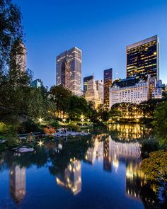 The Pond In Central Park by RBudhu