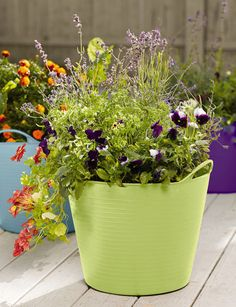 Self-Watering TubTrug Planter - Gardener's Supply Company