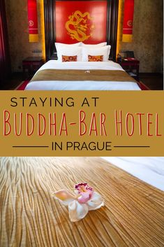 The Buddha-Bar hotel is one of the most unique places to stay in Prague! The hotel has a tasteful asian theme, luxury amenities and restaurant / night club. #Prague Night Club, Night Life, Asian Inspired Decor, Cafe Pictures, Prague Hotels, Visit Prague, Cute Cafe, Prague Travel, Old Town Square
