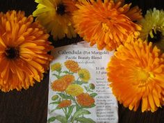 Why not plant some Calendula?   http://www.rootsimple.com/2011/02/why-not-plant-some-calendula/