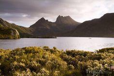 Fotka, Foto Tasmánie - Cradle Mountain (Austrálie)