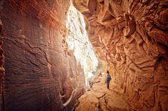 Wandere durch die kurvenreichen Schluchten des Zion-Nationalparks.