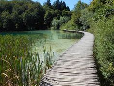 Lacs de Plitvices, Croatie © Rachel Bignard