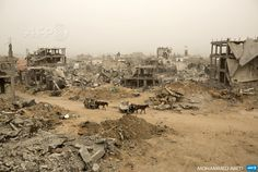 GAZA CITY: Palestinians ride donkey carts during a sandstorm on February 11, 2015 next to buildings destroyed during last year's 50-day  war between Israel and Hamas-led militants, in Gaza City's al-Shejaiya  neighborhood. AFP PHOTO / MOHAMMED ABED