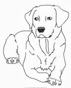 labrador retriever coloring page sketch coloring page