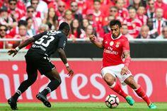 Benfica com mesmo 'onze' que assegurou 'tetra', Vitória com Miguel Silva e Raphinha - Desporto - SAPO 24