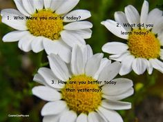 3 Questions A Day™ - Google+