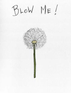 blow me.