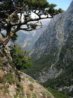 Lefka Ori - White Mountains Crete  The landscape that made me fall in love with Crete. I wanna go hiking here one day.