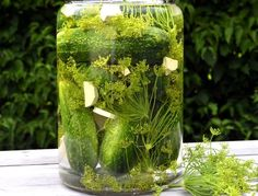 Snabbsaltade gurkor Pickle Jars, Dried Fruit, Kombucha, Chutney, Lchf, Preserves, Pickles, Cucumber, Glass Vase