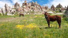 Cappadocia, Turkey : Best Places to Go Horseback Riding : TravelChannel.com