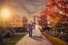 Okanagan Wedding Composite by amhill