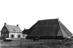 Zoals het vroeger was... Eerste boerderij in de polder van Schiermonnikoog