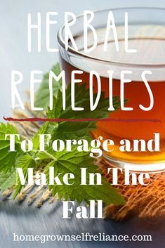 Herbal tea - Herbal Remedies to forage and make in the fall Home Remedies For Warts, Natural Remedies For Migraines, Eczema Remedies, Cold Home Remedies, Holistic Remedies, Natural Health Remedies, Herbal Remedies, Ginger Benefits, Natural Treatments