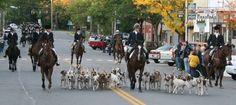 Morning of a fox hunt- Geneseo, NY Photo by Bill Gamble